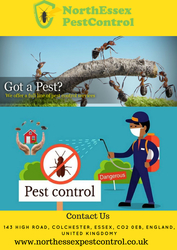 Do You Want Pest control Contact Us 07487351351 | North Essex Pest